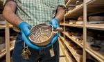 AZ Museum ancient pottery